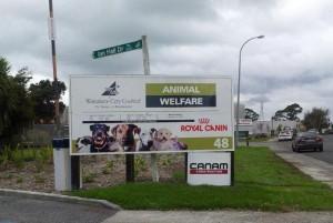 animal welfare 1