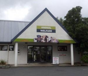 animal welfare 2